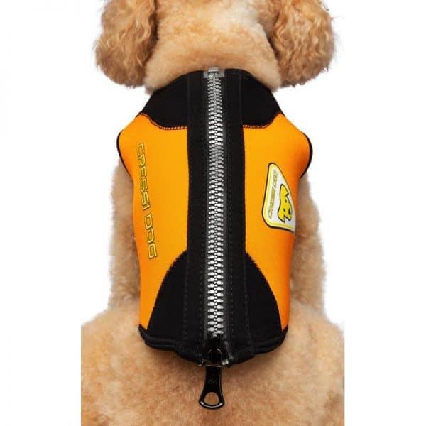 cressi-dog-wetsuit-muta-in-neoprene-per-cani