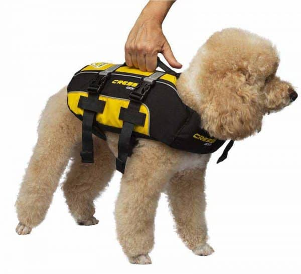 cressi-dog-salvagente-per-cani-dog-life-jacket-poodle-barboncino_1