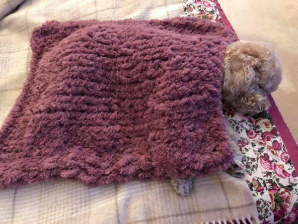 coperta cane gatto pelliccia sintetica filati Mondial